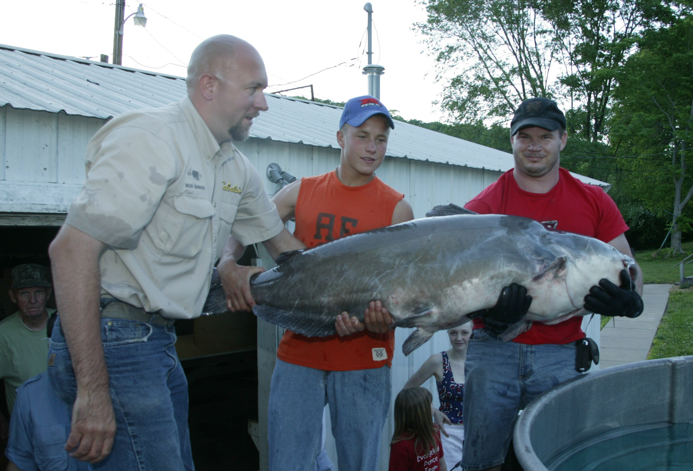 MIDDLE MISSISSIPPI RIVER CATFISH GROW BIG | DON GASAWAY'S BLOGWorld Record Blue Catfish