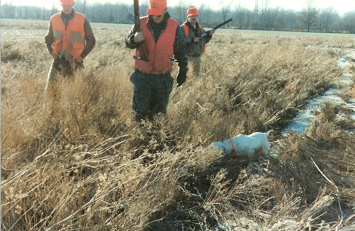 Pheasant Hunting Tips | DON GASAWAY'S BLOG