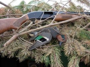 Hunting The Small Ducks Don Gasaway S Blog