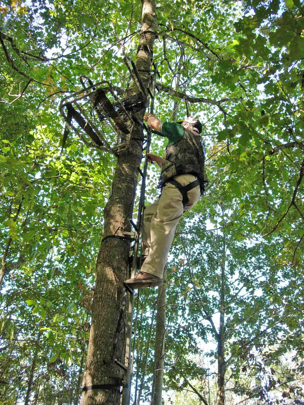 SCENT FREE TREESTANDS   DON GASAWAY'S BLOG