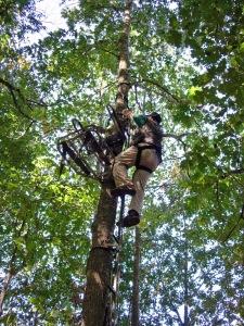 Treestand 0002