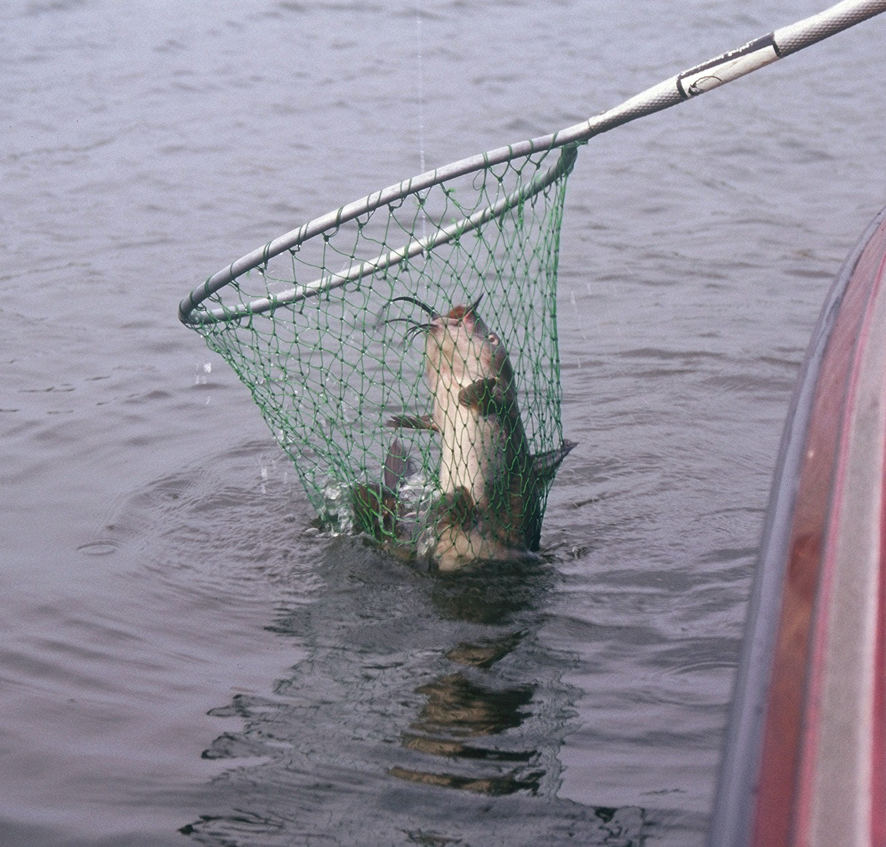 Illinois randolph county baldwin - To Catfish Anglers Baldwin Lake Offers Some Prime Water A Cooling Lake For The Power Plant The Lake Provides An Active Growing Season All Year